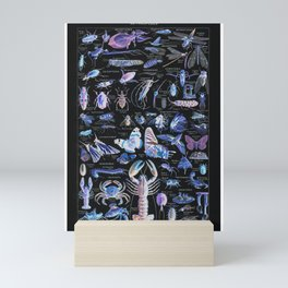 Adolphe Millot - Arthropodes pour tous (insects for all) Mini Art Print