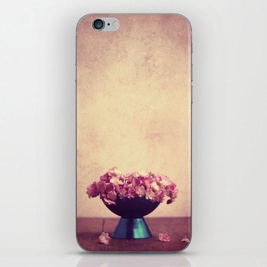 depósito iPhone & iPod Skin