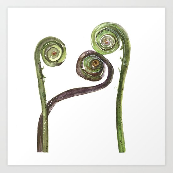 Etched Into Nature No.2 Forest Fiddlehead Ferns Art Print