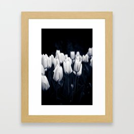 White Tulips In Cool Light Framed Art Print