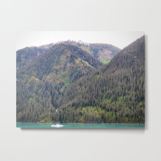 Forest and Mountains Metal Print