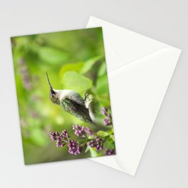 Hummingbird with Lilacs Stationery Cards