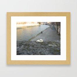 gum, Paris Framed Art Print