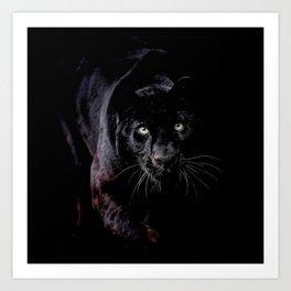 Panther Eyes Art Print