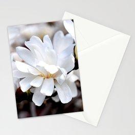 Magnolia 5 Stationery Cards