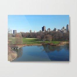 New York City's Central Park Metal Print