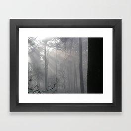 Winter forest 3 Framed Art Print