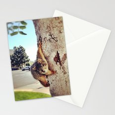 Good morning, Mr. Squirrel. Stationery Cards