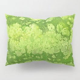 Watermelon texture Pillow Sham