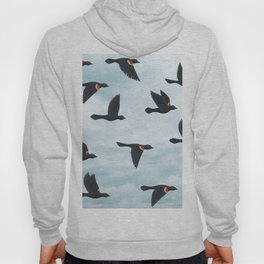red-winged blackbirds and blue sky Hoody