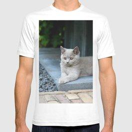 Bikkel the cat ! T-shirt