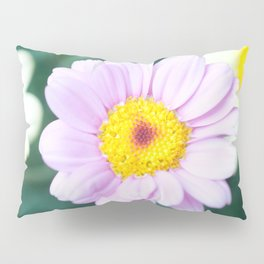 Soft Pink Marguerite Daisy Flower #1 #decor #art #society6 Pillow Sham