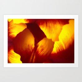 Abstract - Tulip Art Print