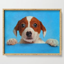 Cute Jack Russell Terrier Puppy Serving Tray