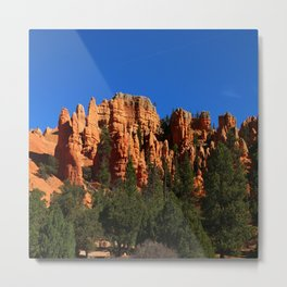 Dixie Forest Hoodoos Metal Print