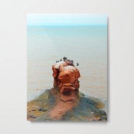 Cormorants on Red Sandstone Rock Metal Print