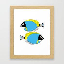 Powder blue tang Framed Art Print