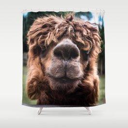 Curious Llama Shower Curtain