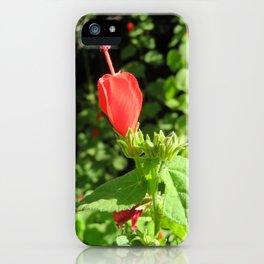 Arboretum Flower- Color iPhone Case