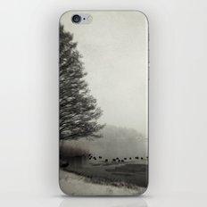 The Thaw iPhone & iPod Skin