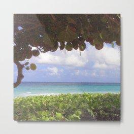 Ocean View through Sea Grapes Metal Print
