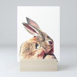 Rabbit Portrait Mini Art Print