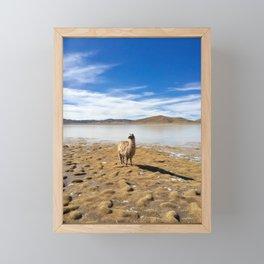 No Drama Llama Framed Mini Art Print