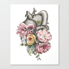 Floral Anatomy Heart Canvas Print