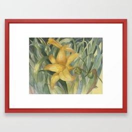 Sunlight Blossom Framed Art Print