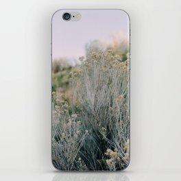 Desert Blush iPhone Skin