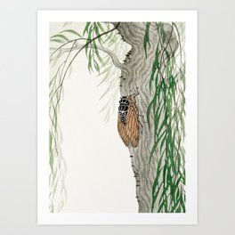 Cicada on a weeping willow tree - Japanese vintage woodblock print Art Print