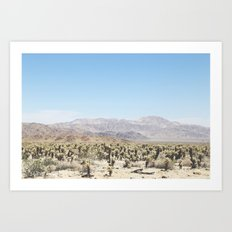 Joshua Tree Park Art Print