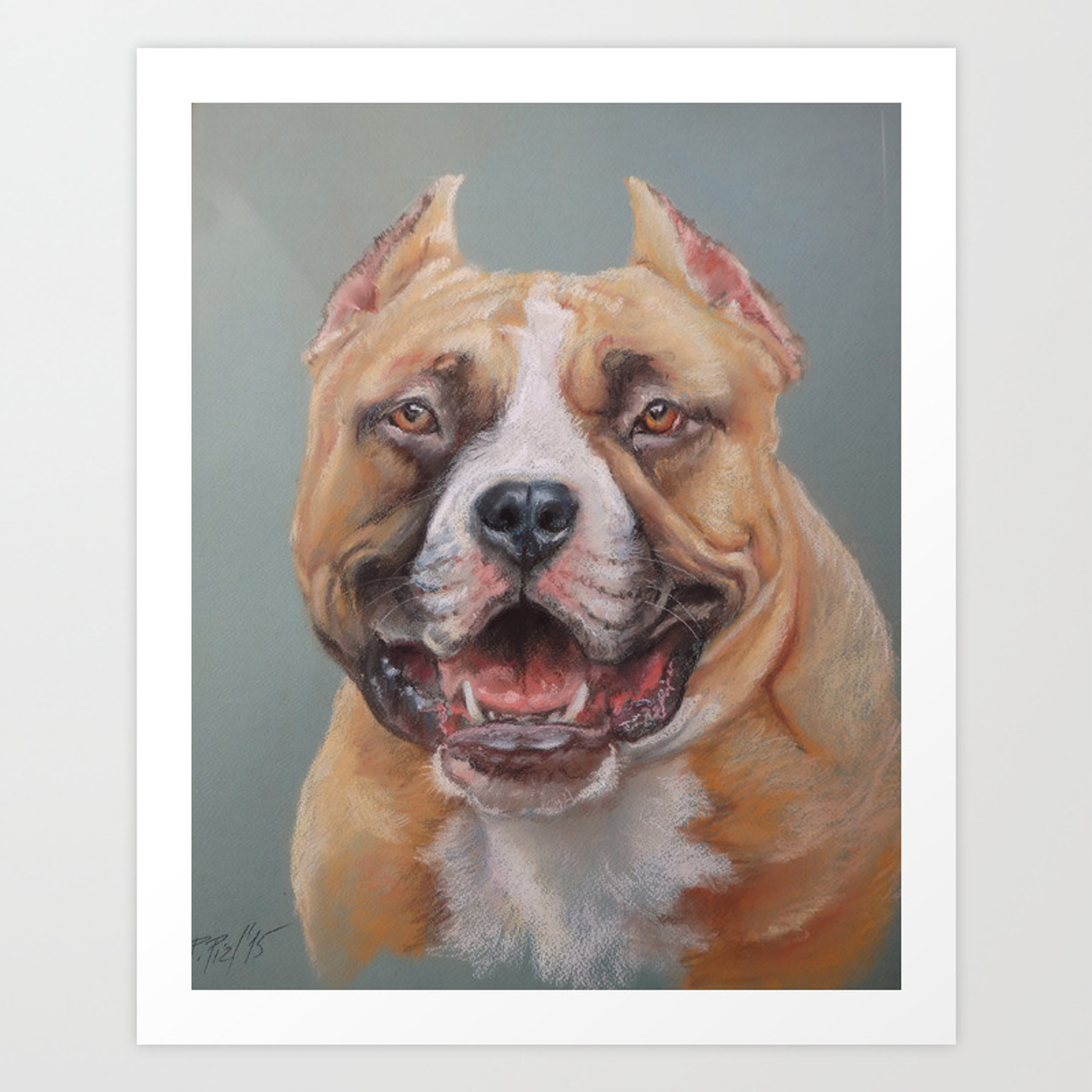 Happy Dog Smiling Amstaff Face Cute Pet Portrait Pastel Drawing Decor For Dog Lover Art Print By Canisart Society6