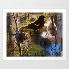 life thru the eyes of a red winged blackbird Art Print