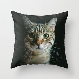 Portrait of a Cat Throw Pillow