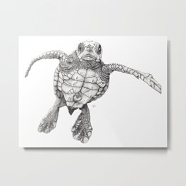 Chelonioidea (the turtle) Metal Print