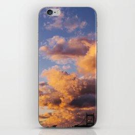 Sunset in Queens iPhone Skin