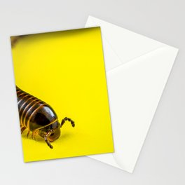 Millipede Stationery Cards