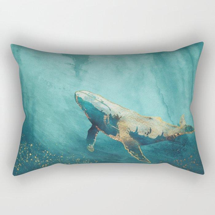 Light Beneath Rectangular Pillow