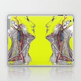 Dual anatomy Laptop & iPad Skin
