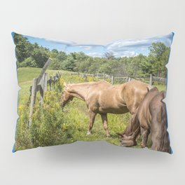 Out to pasture Pillow Sham