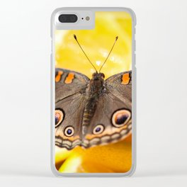 Common Buckeye Junonia Coenia Clear iPhone Case