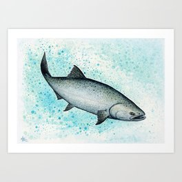 """Salmon Splash"" by Amber Marine ~ Watercolor Painting (Copyright 2016) Art Print"