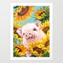 Baby Pig with Sunflowers in Blue by bignosework