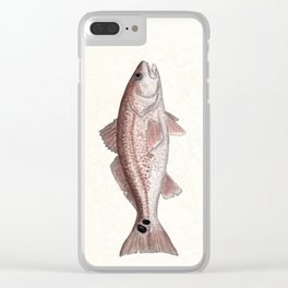 """Redfish"" by Amber Marine - (Red Drum) Sciaenops ocellatus ~Watercolor Illustration,(Copyright 2013) Clear iPhone Case"