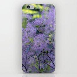 Longwood Gardens - Spring Series 209 iPhone Skin