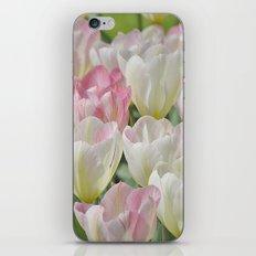 Tulpen iPhone & iPod Skin