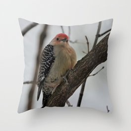 Red Bellied Woodpecker Throw Pillow