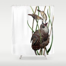 Baby Bird I Shower Curtain