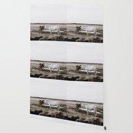 Wild Horses Wallpaper